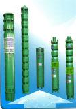 Wohle bohrende vertikale Turbine-tiefe Vertiefungs-Kraftstofftank-versenkbare Kraftstoffumfüllung-Pumpe