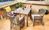 Мебель ротанга PE нового патио балкона отдыха типа напольного творческая