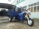フィートのフェンダー(Tr12)が付いている150cc貨物三輪車か3つの車輪のオートバイ