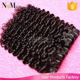 弾力があるカーリーヘアーのブラジルの毛は熱く自然な巻き毛を出荷する1日編む