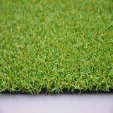 Herbe synthétique pour le sport Gfp de golf