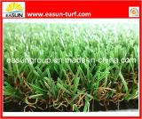 Трава ковра сада (N4SD1540)