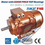 Motor elétrico do compressor da eficiência Ye3 elevada