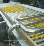 Accomplir la chaîne de production fraîche clés en main de jus
