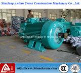 O motor de C.A. trifásico elétrico dobro do eixo de saída