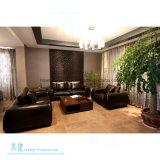 ホーム(HW-A8005S)のための現代居間PUの革ソファー