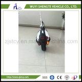 Motorino elettrico piegante d'equilibratura di auto della rotella di vendite dirette due della fabbrica
