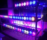 Lámpara montada en la pared al aire libre de la iluminación LED del LED