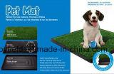Haustier-Toilette beweglicher Traning Auflage-HundePotty Matte