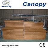 De openlucht Luifel van de Regen van het Polycarbonaat en van het Aluminium (B910)