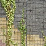 China-Grossist Zhuoda geschweißter Gabion Garten