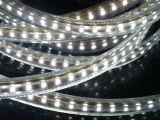 corda flessibile di 220V/127V LED (HVSMD2835-120)