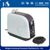 HSNEG小型ピストン空気圧縮機Hs386