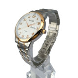 Stainless di qualità superiore Steel Waterproof Watch per Men MW-07