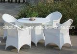 Cadeira de jantar de vime do Rattan do jardim de H-China