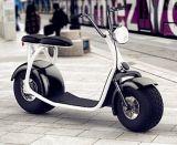 motocicleta eléctrica 1000W con el rango de los 80km