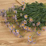 Маргаритки PE высокого качества цветок Handmade искусственний (SW10101)