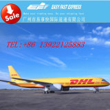 DHL Shipping Agent Send Cell Accessories vers la Turquie