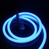 가득 차있는 고체 PVC를 가진 파란 유연한 LED 네온 등