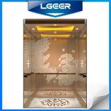 Splendid Passenger Elevator/Lift