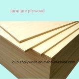 madeira compensada comercial do vidoeiro de 1220X2440mm com boa qualidade