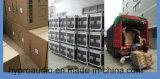 V25 verdoppeln eine 15 Zoll-Zeile Reihe, PROaudio, Zeile Reihen-System, im Freienlautsprecher