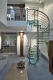 Escadaria espiral no vidro e no aço inoxidável para o &Interior interior