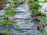 地被植物のための安いPPによって編まれるカバー
