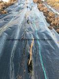 أسود [90غسم] بلاستيك مضادّة [أوف] يحاك أرض تغطية بناء