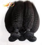 Em linha reta cabelo 100% Kinky do Virgin que tece a extensão malaia do cabelo