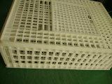 Cage de transport/caisse en plastique animales rotation de poulet