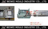 Frigorifero Plastic Injection Mould in Huangyan