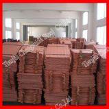 Lamiera sottile di rame di elevata purezza 99.9% (C11000 C10100 C10200 C1100)