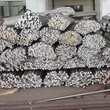 Barra 6061, 6082, 2A12, 2024, 5052, 7075 della lega di alluminio