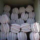 Pimentões de Yunnan Arbol com haste