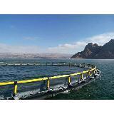 Anti-Onduler la cage de filet de pêche de mer profonde d'aquiculture