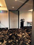 회의 홀을%s 청각적인 움직일 수 있는 칸막이벽 또는 호텔 또는 무도실