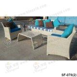 Напольные комплекты софы, мебель ротанга патио, комплекты софы сада (SF-078)