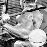 Gain Muscle를 위한 백색 Solid 6-Bronmandrostenedione