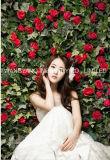 Hotsale 인공 꽃 벽
