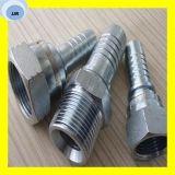 Embouts de durites hydrauliques du mâle 13011-Sp de Bsp