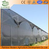 Trésor Multi-transmembranaire Plastique Des Serres Agricoles