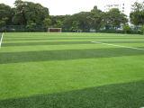 Erba/tappeto erboso artificiali del monofilamento di alta qualità per gli sport