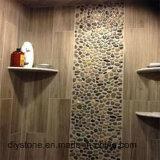 Mosaico blanco del guijarro de la alta calidad