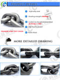 Catena a maglia ad alta resistenza di sollevamento dell'acciaio legato