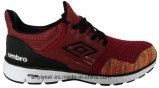 La ginnastica di uomini atletica delle calzature di Flyknit di marca mette in mostra i pattini (816-9935)