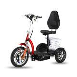 Us/Japan/유럽 좋은 인기 상품 새 모델 Ebike 3 바퀴 스쿠터