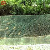 Het plastic Net van het Gras dat in de Techniek van de Bescherming van de Helling wordt gebruikt