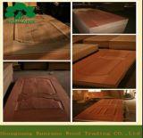 2015 кожа двери Veneer серии HDF самого последнего двойника конструкции выпуклая деревянная