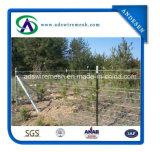、フィールド塀囲う、2.5mmの牛金属の農場の塀/シカの農場牛塀